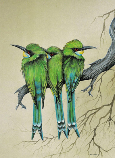 Swallow taled Bee eaters