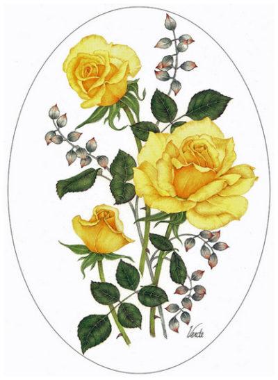 Yellow rose cameo design